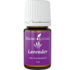 Lavender 5ml