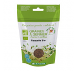 Seminte de rucola Bio pentru germinare