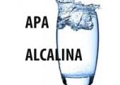 APA ALCALINA