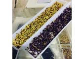 Ce sunt semintele germinate