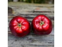 Dusmanul din fructoza – 9 cele mai sanatoase fructe